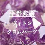 平野紫耀のヴィトンネックレスの値段と指輪のブランドはクロムハーツ?どこで買えるか調査!